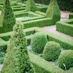Amy O'Boyle Photography Garden Maze (36)