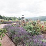 Photo of Garden By McKenzie Brown